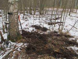 Поисковики отряда «Новгородец» обнаружили останки двух советских солдат