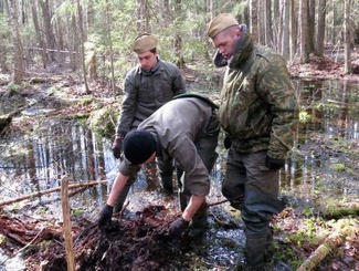 Поисковики из Белоруссии приняли участие в экспедиции в Новгородской области