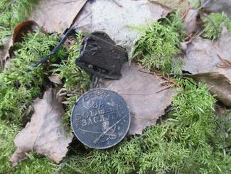 Поисковики Новгородской области установили принадлежность двух наград, обнаруженных весной под Мясным Бором