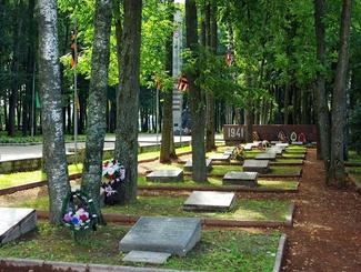 В Смоленской области поисковики создают мемориал Неизвестных солдат: 3 декабря там похоронят неопознанного защитника Отечества