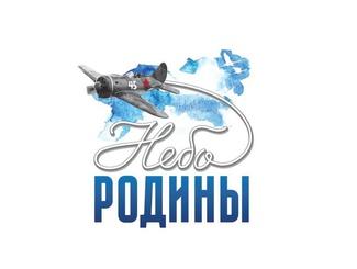 Участники проекта «Небо Родины» проведут межрегиональный семинар-практикум в Рязанской области
